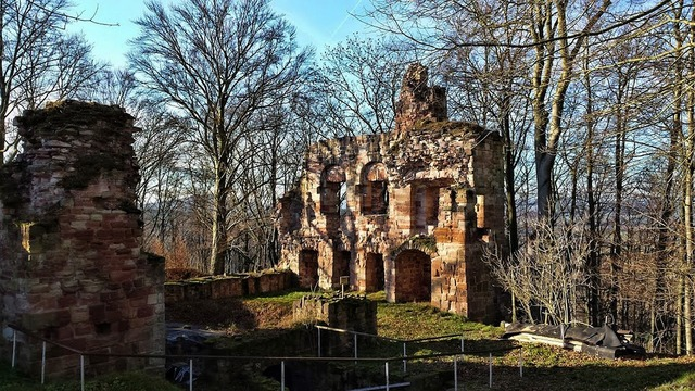 Ruin krayenberg thuringia germany, nature landscapes.