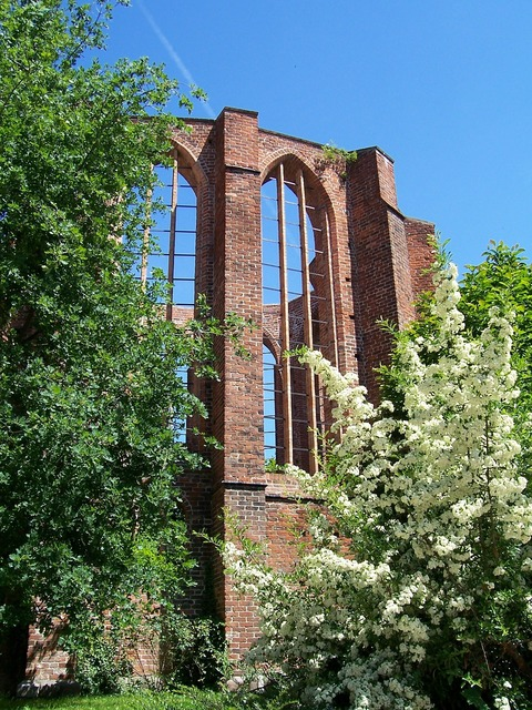 Ruin monastery stralsund, religion.