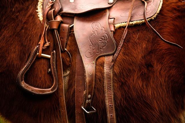 Saddle horse riding, animals.