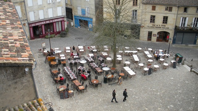 Saint-emilion vineyard france.