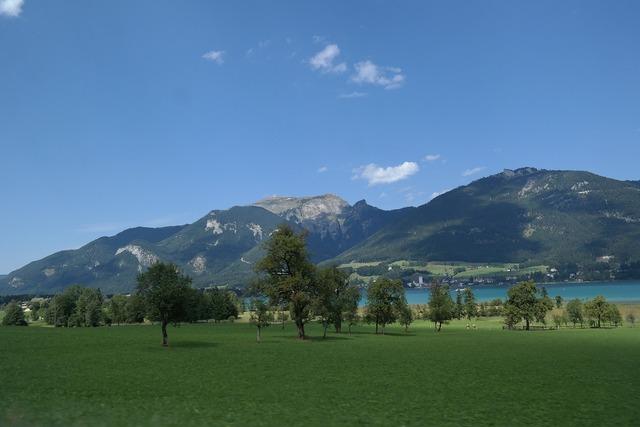 Salzburg lake wolfgang meadow.