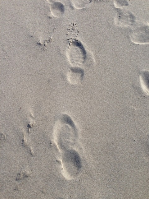 Sand baltic sea traces, travel vacation.