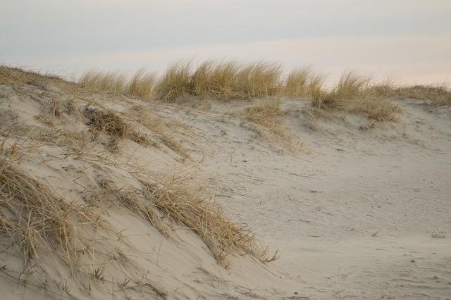 Sand beach dunes, travel vacation.