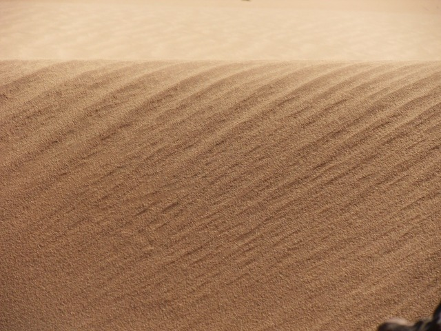 Sand wuese gone with the wind, nature landscapes.