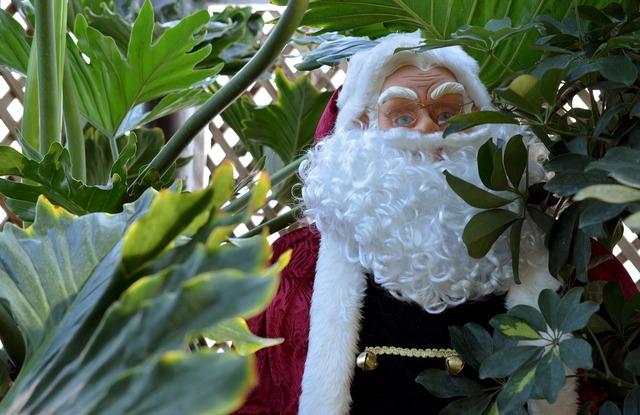Santa santa claus hiding.