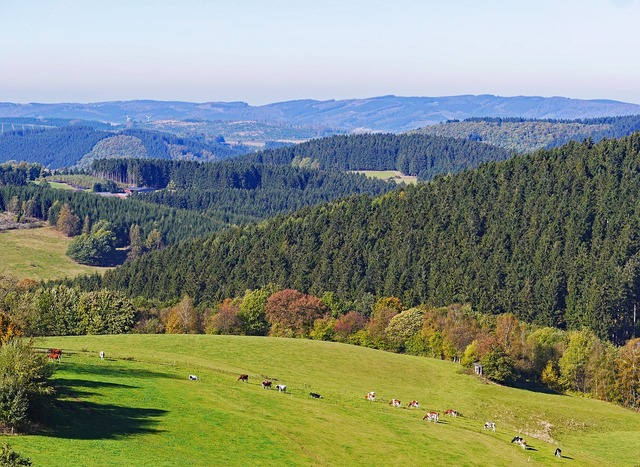 Sauerland homert highlands, nature landscapes.