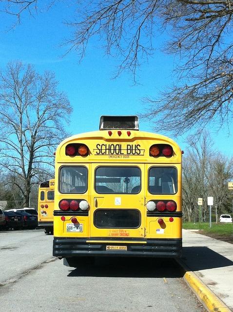 School school bus bus, education.