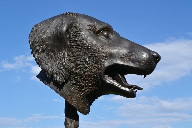 Sculpture ai wei wei dog, animals.