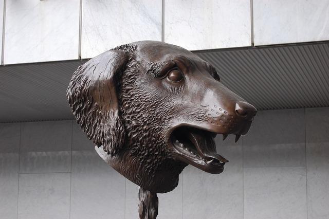 Sculpture museum mexico, animals.