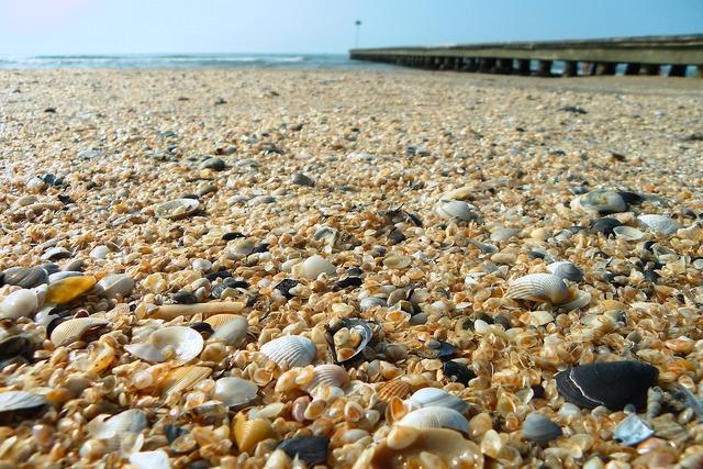Sea beach jetty, travel vacation.
