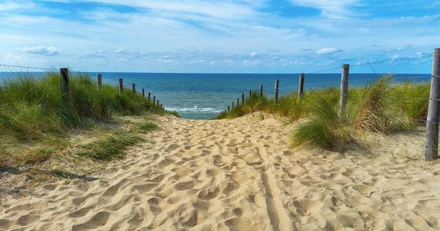 Sea dunes dune grass, travel vacation.
