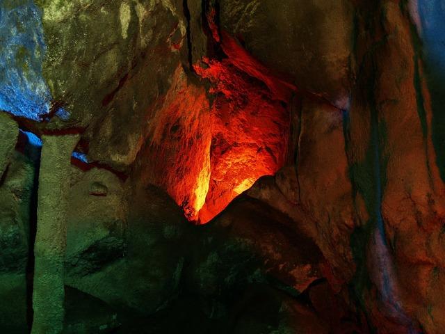 Sea lions cave oregon usa.