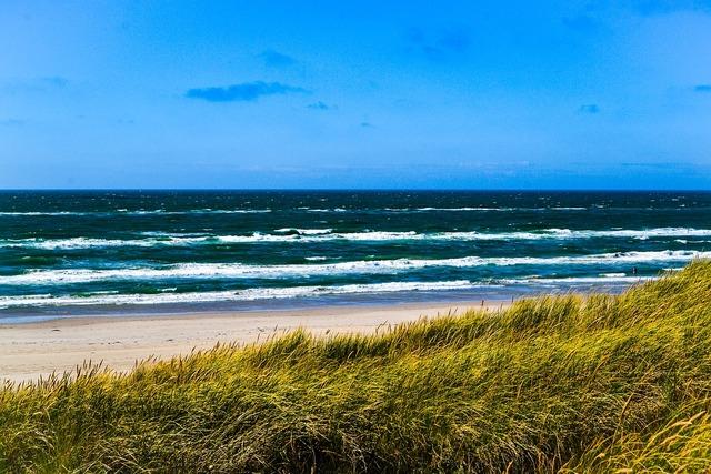 Sea north sea dunes, travel vacation.