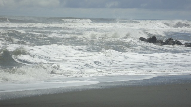 Sea surf beach, travel vacation.