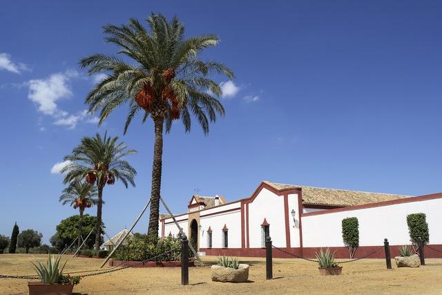 Sevilla polo stables.