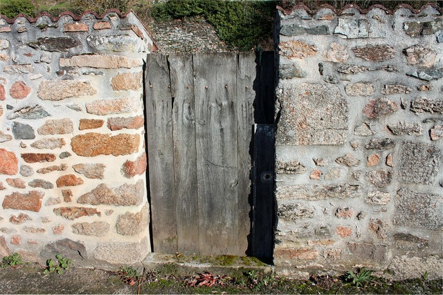Shabby door gate garden door, backgrounds textures.
