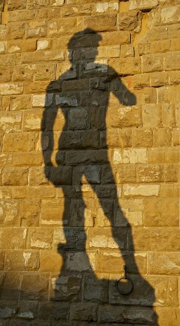 Shadow david michelangelo.