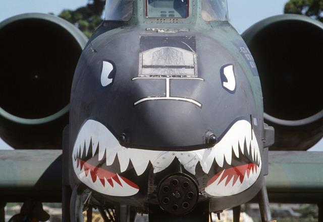 Shark face aircraft a10 thunderbolt ii.