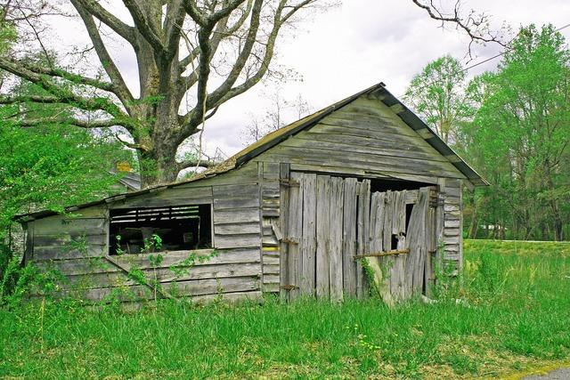 Shed old rural.