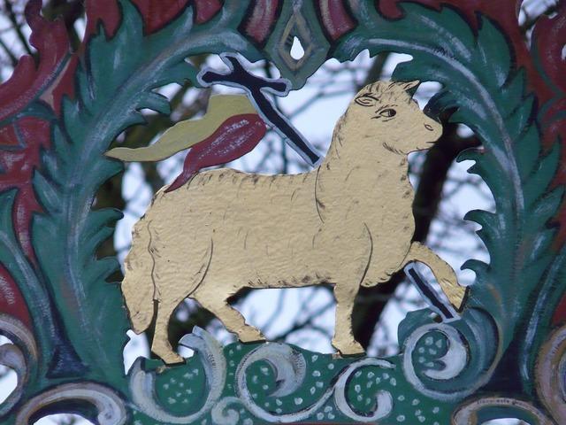 Shield sheep lamb.