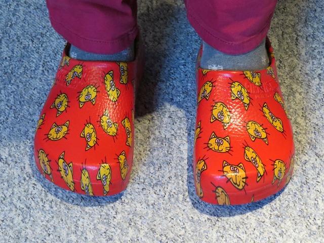 Shoe slipper clog, animals.