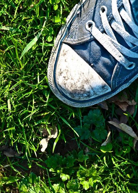 Shoes grass summer.