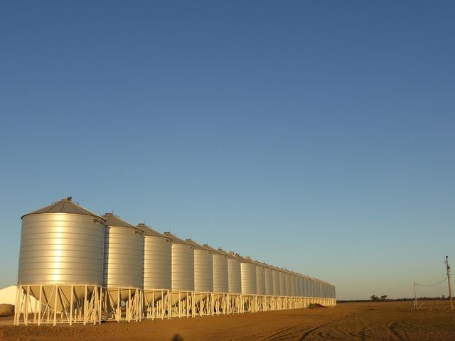 Silo grain farmer, architecture buildings.