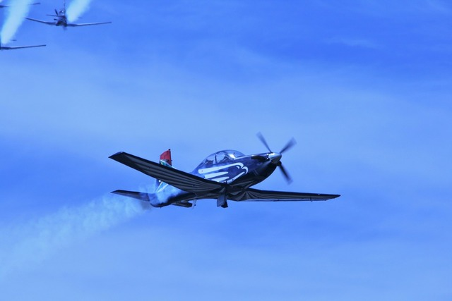 Silver falcon aerobatic team aircraft jet.