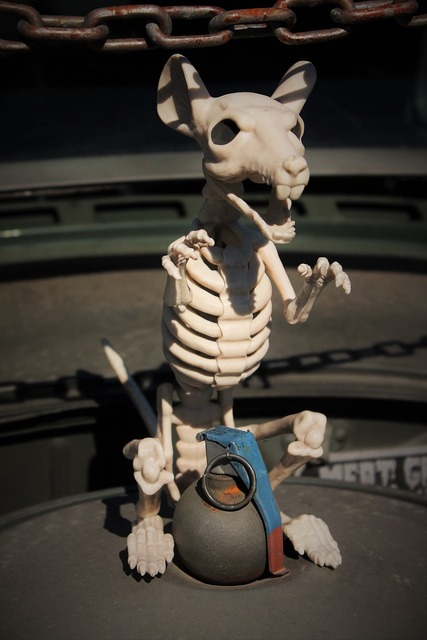Skeleton rat grenade insane, emotions.