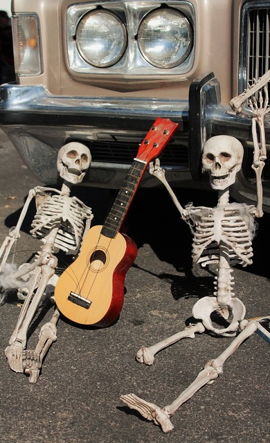 Skeletons afterlife dia de los muertos, emotions.