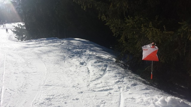 Ski orienteering alpine, sports.