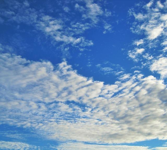 Sky blue vivid.