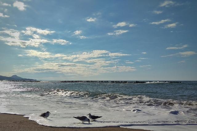 Sky sea beach, travel vacation.