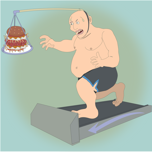 Slimming physical exercise treadmill.