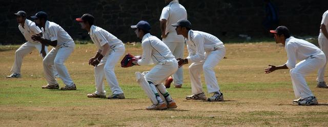 Slips wicket keeper cricket.