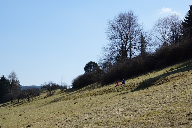 Slope meadow nature, nature landscapes.