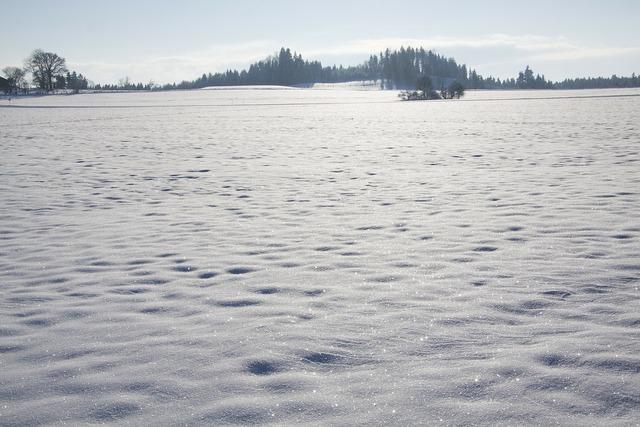 Snow cold sparkle.