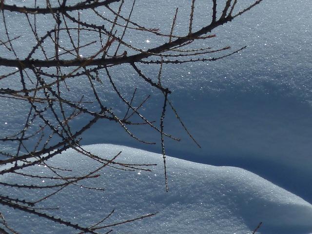 Snow crystal white.