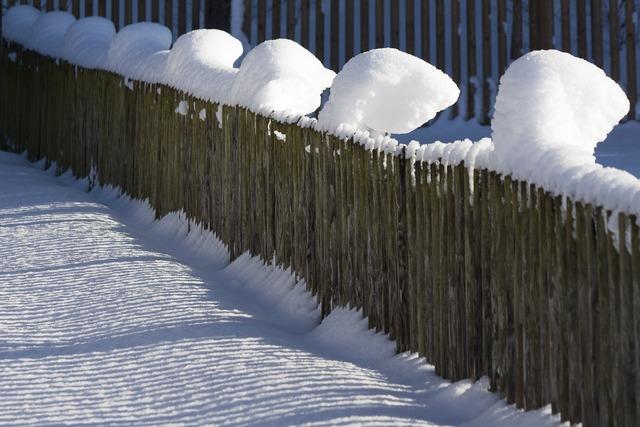 Snow hoods snow caps.