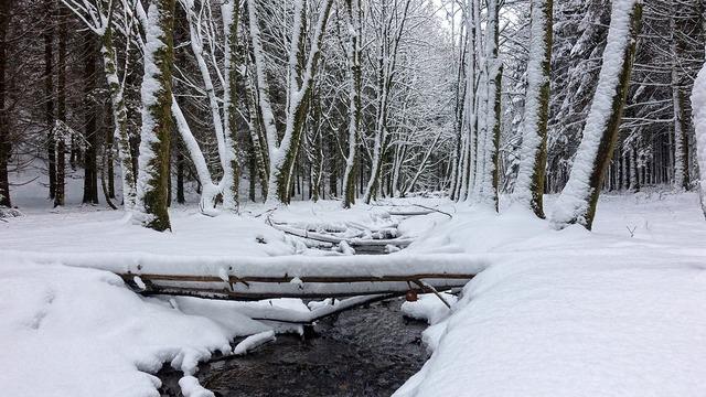 Snow white winter landscape.