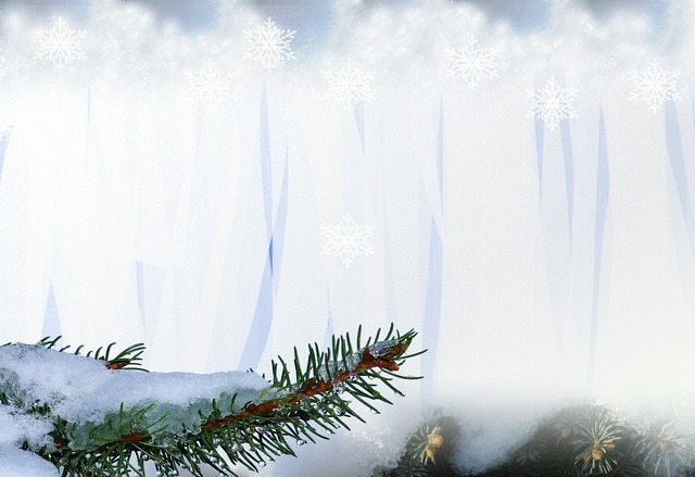 Snow winter christmas, backgrounds textures.