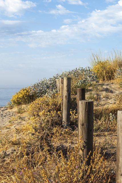 Soledad sea holiday, travel vacation.