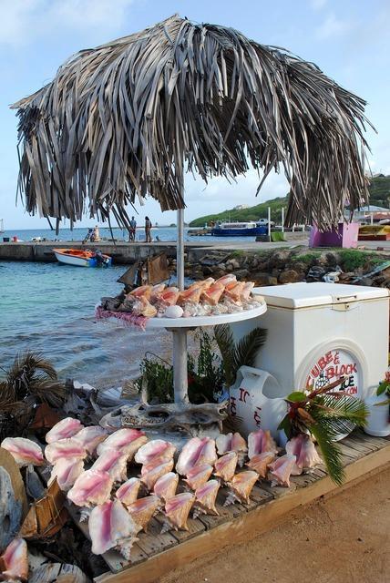 Souvenir shells conch, travel vacation.