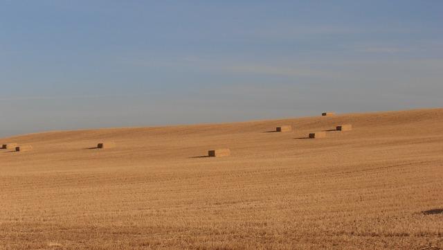 Spain meseta hay.