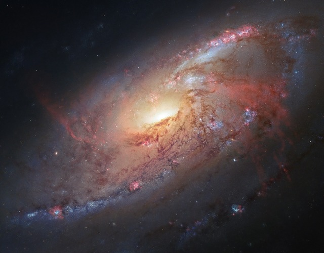Spiral galaxy m106 stars.