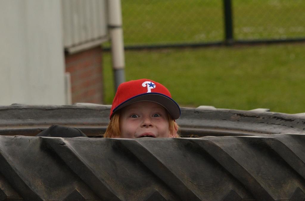 Sports baseball pet, sports.