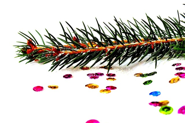 Spruce photos of christmas christmas.