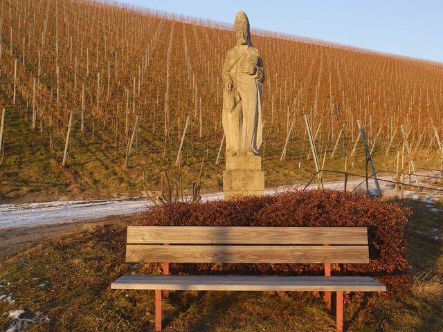 St urban patron saint vineyard.