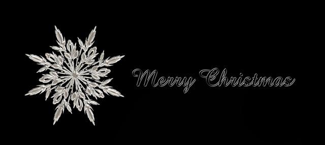 Star christmas white.