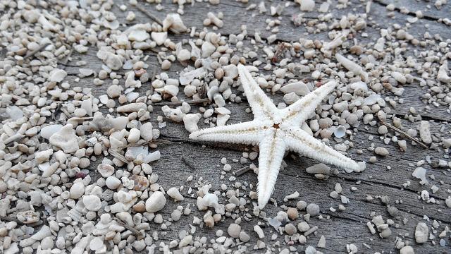 Star sand beach, travel vacation.